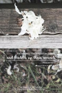11/52 - Psalm 147:3
