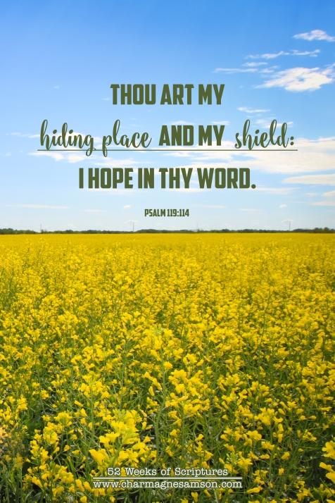 13/52 - Psalm 119:114