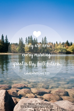 16/52 - Lamentations 3:23