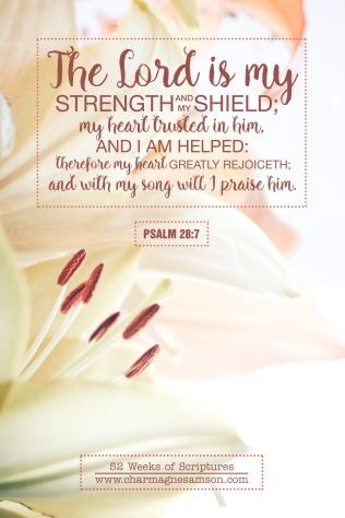 7/52 - Psalm 28:7